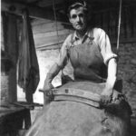 Scraping the cattle hides – the first stage of the tanning process